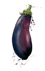 wonderful watercolor painted eggplant, in which i'll attempt to paint as well.