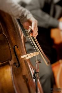 Cello's dust